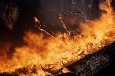 incendios-servicios